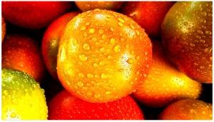 fruit-192753_