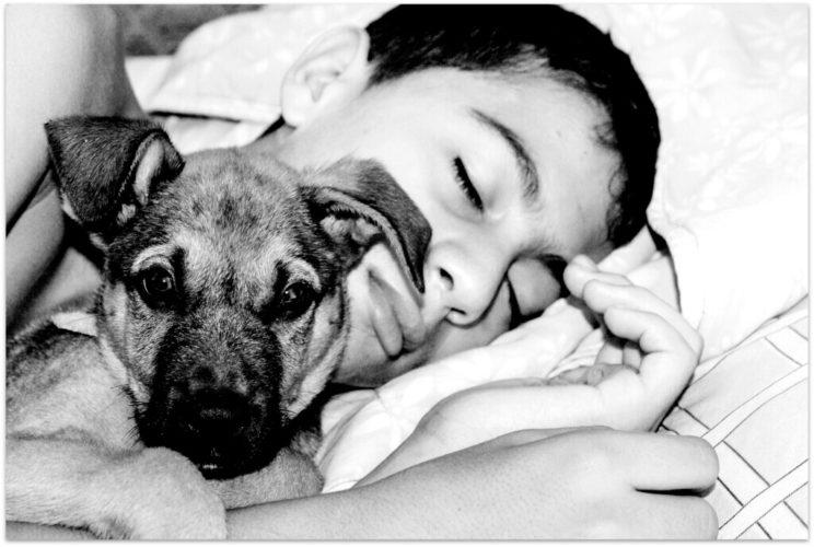 dog-boy-4-1024x688