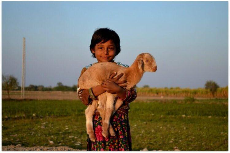 goat-child-1024x683